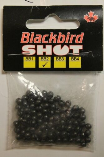 Blackbird Shot