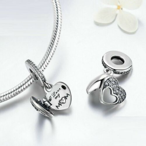 925 Sterling Silber Silver PAN SONDERAUSGABE Charm Fit Bracelet Passend Armband