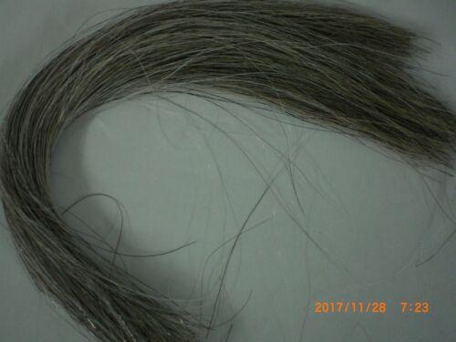 Horse Hair, Natural Silver Grey, 1 Ounce, 13-15 Inch