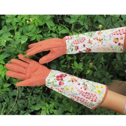 Gardening Gloves Long Sleeve Yard  Rose Florist Pro Thorn Resistant For Women/'s