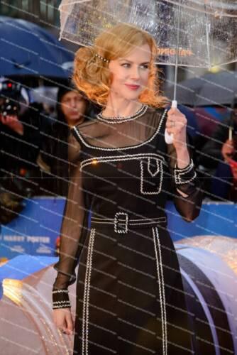 Nicole Kidman Poster Picture Photo Print A2 A3 A4 7X5 6X4