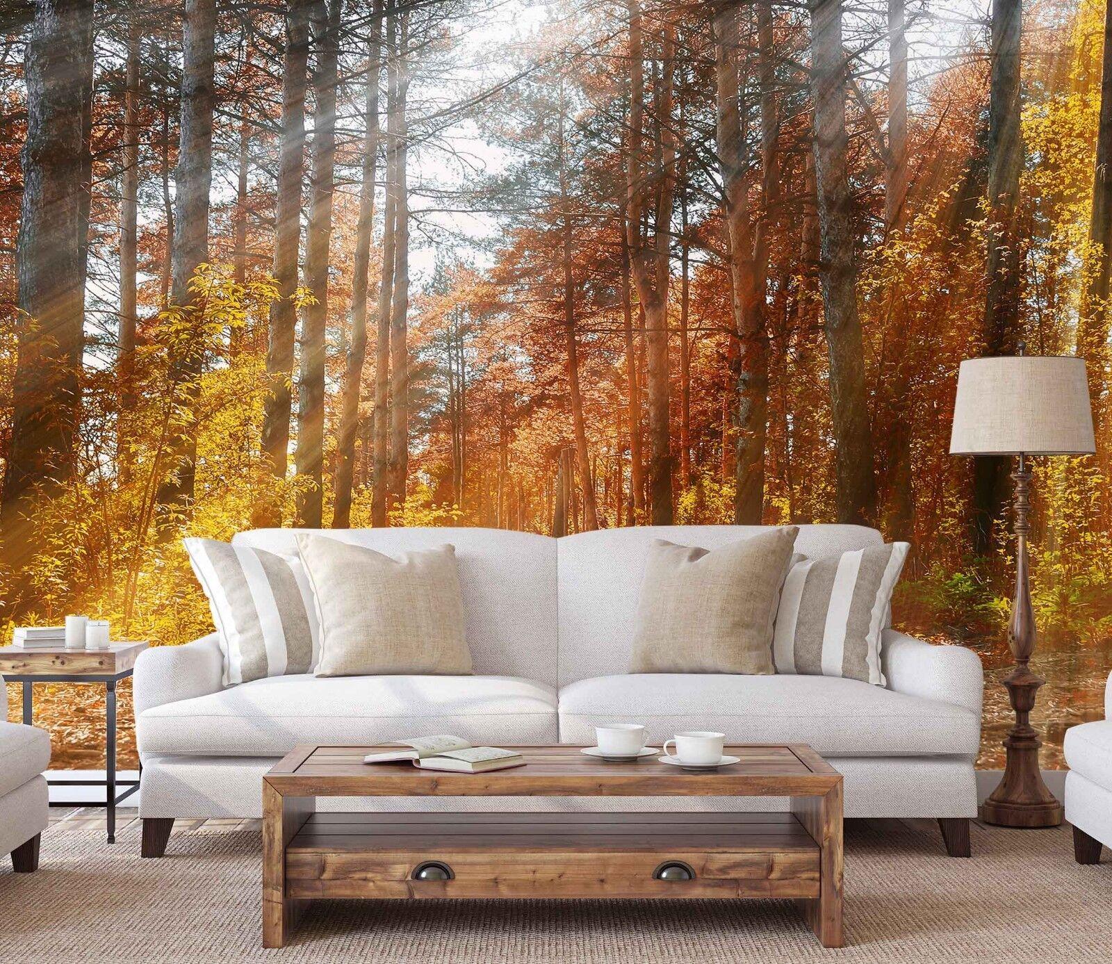 3D Sun Land Woods 454 Wallpaper Murals Wall Print Wallpaper Mural AJ WALL UK