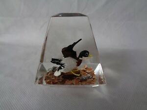 Vintage-Unique-Canada-3-034-Lucite-Paperweight-Hand-Carved-Duck
