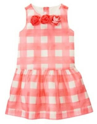 NWT Gymboree Spring Dressy Collection Pink Dress Size 4 5 Easter Dress