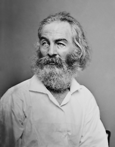Walt Whitman Great American Author Poster Art Artwork 11x14 16x20 or 20x24