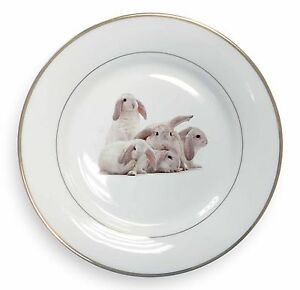 Cute-White-Rabbits-Gold-Rim-Plate-in-Gift-Box-Christmas-Present-AR-5PL