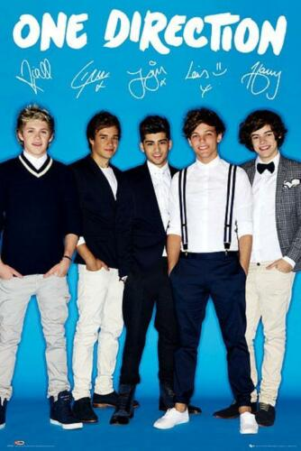 One Direction Maxi Poster 61cm x 91.5cm new and sealed Signature