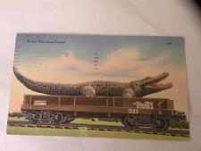 VINTAGE POSTCARD LINEN EXAGGERATION ALLIGATOR ALL THE WAY FROM FLORIDA
