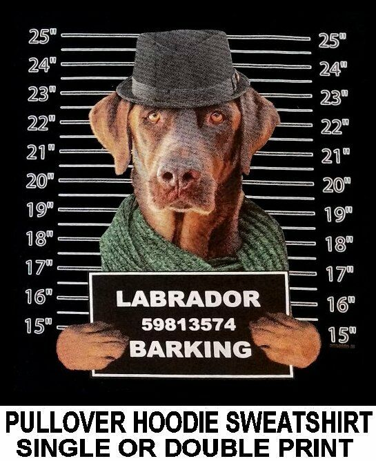 LABRADOR RETRIEVER MUG SHOT FUNNY NAUGHTY BAD DOG PULLOVER HOODIE SWEATSHIRT 769