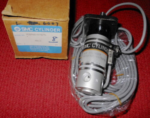 "SMC Cylinder, Model #NCDGFN250100G79L, with a 1"" stroke & 2 position switches"