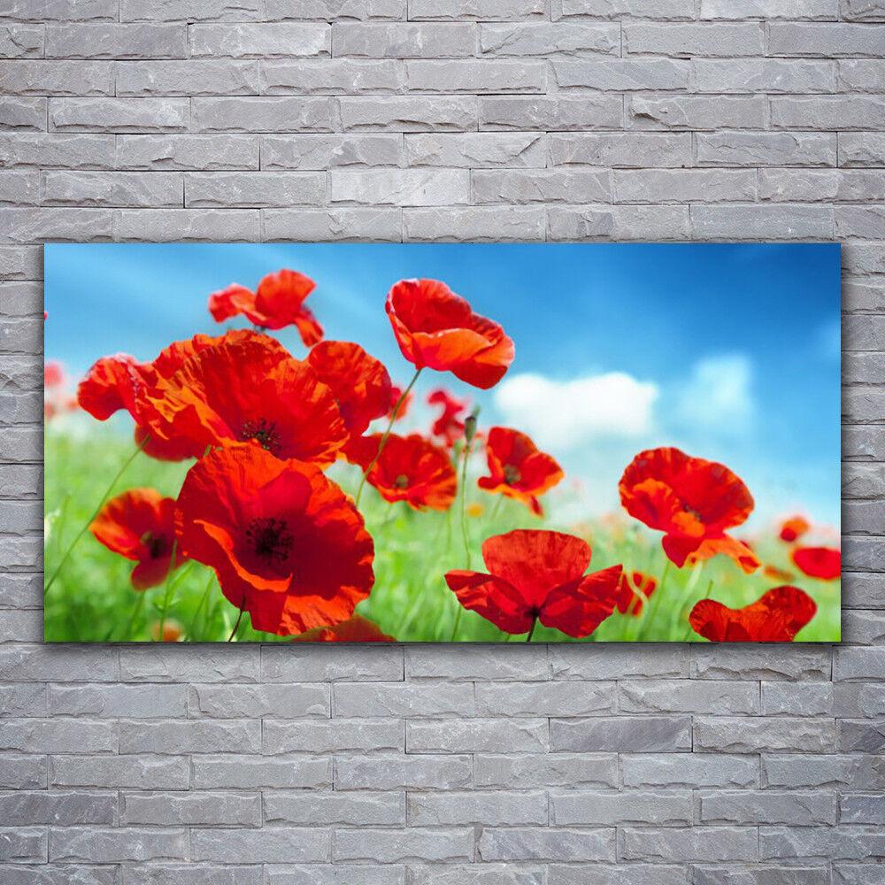 Photo sur toile Tableau Image Impression 120x60 Floral Pavots