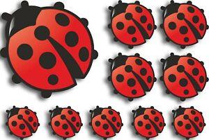 Lady-Bird-Vinyl-Decals-Stickers-Graphics-Nursery-Wall-Window-Decoration-Art-cars