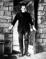 Frankenstein Print 14 X 11