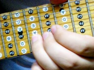 xchord melody scale electric ac guitar sticker xgt ebay. Black Bedroom Furniture Sets. Home Design Ideas