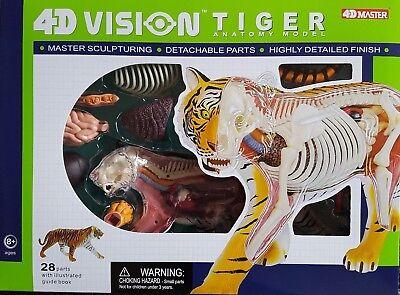 "4d Vision ""tiger"" Anatomy Model - Top Artikel - Neu !!! Novel (In) Design;"