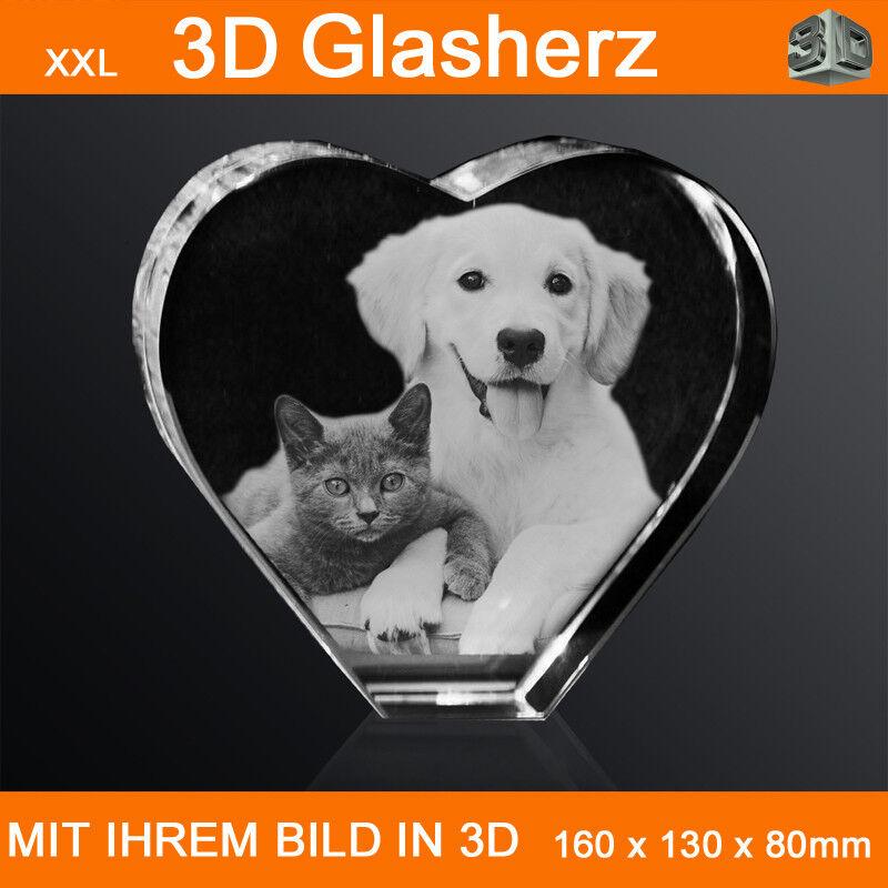 XXL Glasherz 3D Laser Foto Foto Foto Gravur Hund 3D Katze Haustier Weihnachten Liebe Neu   | Sehen Sie die Welt aus der Perspektive des Kindes  29f2f1