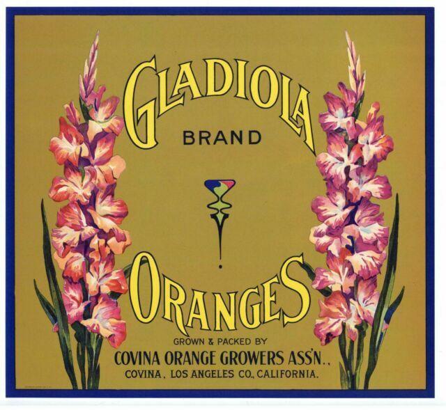 X10 WHOLESALE ORANGE CRATE LABEL GLADIOLA FLOWER COVINA VINTAGE ORIGINAL 1940S