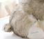 Realistic-Husky-Dog-Plush-Toy-Stuffed-Animal-Soft-Wolf-Pet-Doll-Cute-Kid-Gift-7 thumbnail 5
