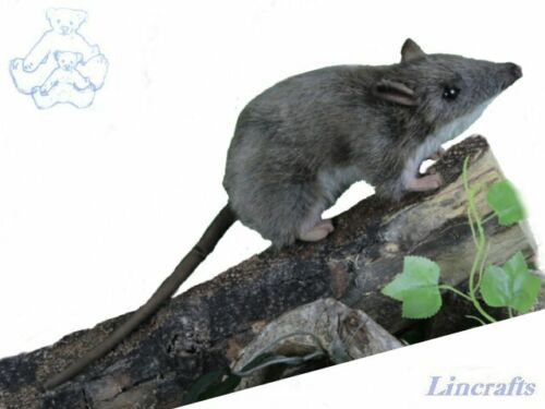 Hansa Long Nose Bandicoot 6042 Plush Soft Toy Sold by Lincrafts Established 1993