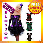 CC33 Ladies Burlesque Moulin Rouge Hens Night Party Dress Costume Corset + Skirt