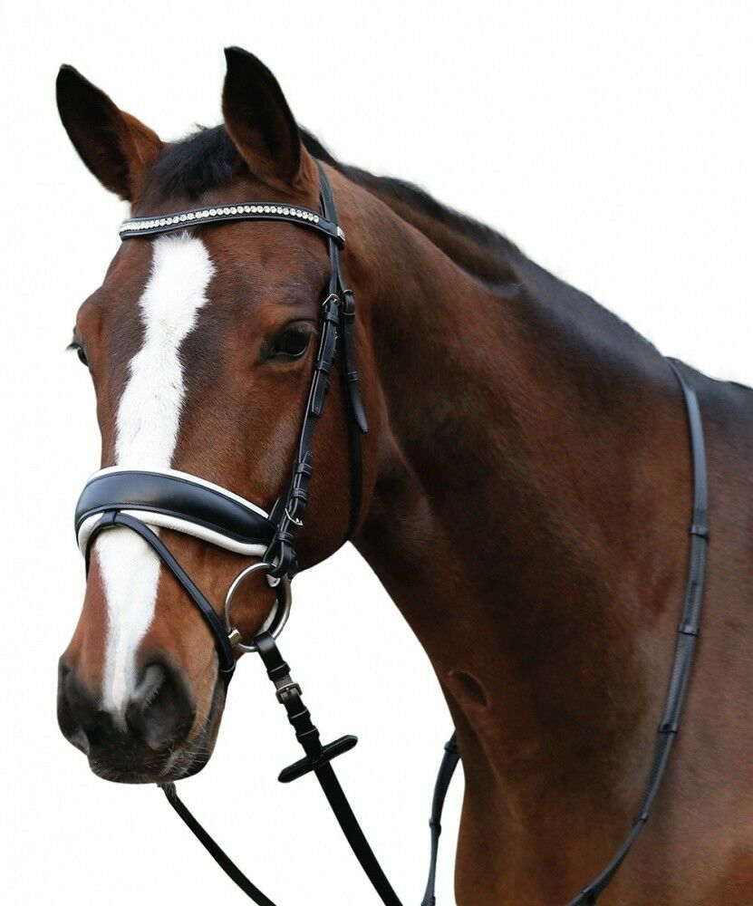Briglie bada con lo sfondo Horse Guard NeroBianco Nuovo