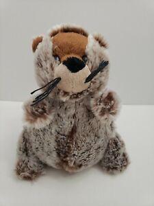 Webkinz-Ganz-Groundhog-Plush-Stuffed-Animal-8-inch-no-Code-hm179-FUNNY-ANIMAL