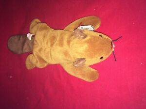 bfc7c1529cf TY Beanie Babies Bucky the Beaver Rare with Errors and PVC Pellets ...