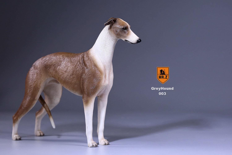 Il SIGNOR Z 1 6th Levriero  Cane Pet Animale cifra modellololololo 003 adatta 12  Soldier Giocattoli Regali  comprare a buon mercato