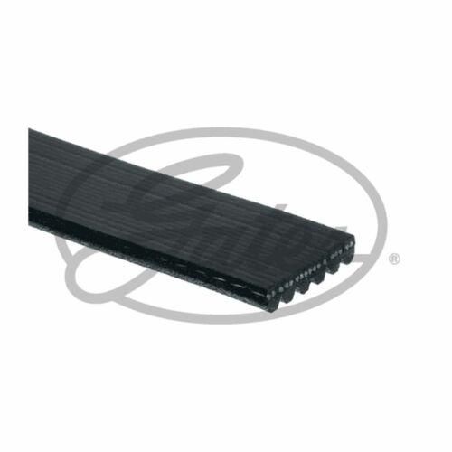 Fits BMW 3 Series E46 330 Ci Genuine Gates Alternator V-Ribbed Belt