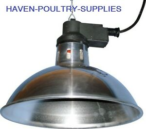 Details About Infrared Brooding Heat Lamp Inc 175w Bulb Chicks Puppies Pets Brooder Made In Uk