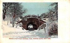 USA New York Winter Scene Bridge over Walk Central Park