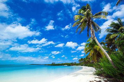 TROPICAL BEACH POSTER 24x36 OCEAN LANDSCAPE PALM TREES 10665