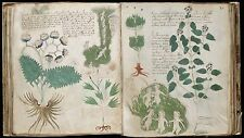THE MYSTERIOUS VOYNICH MANUSCRIPT - CIPHER, CRYPTOGRAPHY, CODE BREAKING - ON DVD