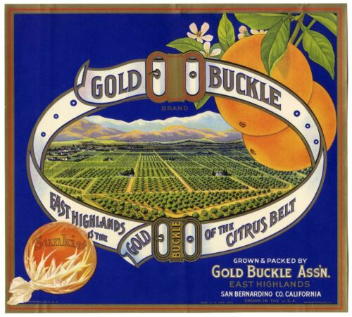 GOLD BUCKLE~ORIGINAL 1930s EAST HIGHLANDS CALIFORNIA ORANGE FRUIT CRATE LABEL