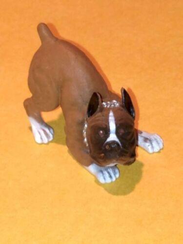 HOOD HOUND DOGS REX BROWN BOXER DOG