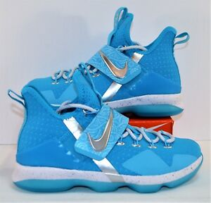 new styles c57f4 0afd1 Details about Nike Lebron 14 XIV HWC GS WWE Rick Flare Nature Boy Shoes Sz  6Y NEW AA3258 404