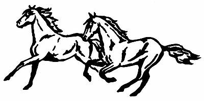 TWO HORSES RUNNING HORSE STICKER DECAL BRAND NEW FOR CAR,FLOAT, TACK BOX #133