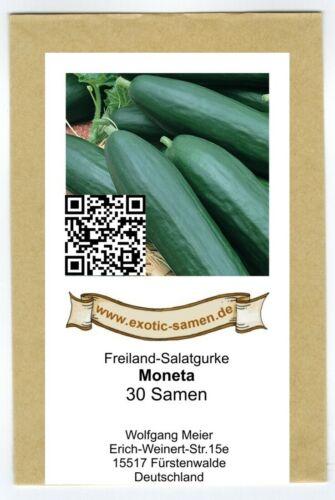 bitterfrei Freiland-Salatgurke 30 Samen Moneta