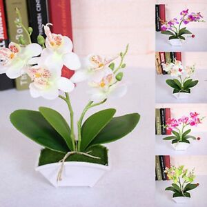 Artificial-Butterfly-Orchid-Flower-Plants-in-Pot-Fake-Home-Decor-Wedding-Party-gt
