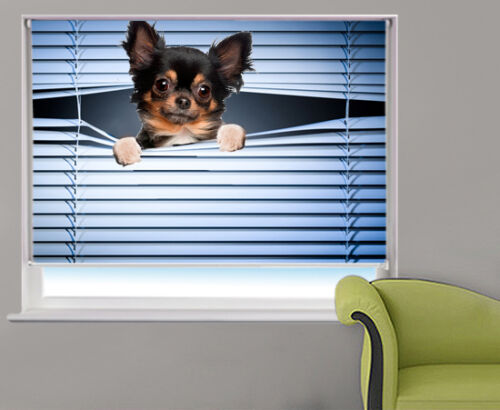 Cute peeking Chihuahua photo printed window blind animal picture roller blind