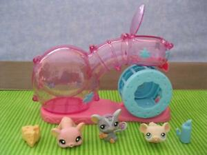 Cartoon Tube Hamster