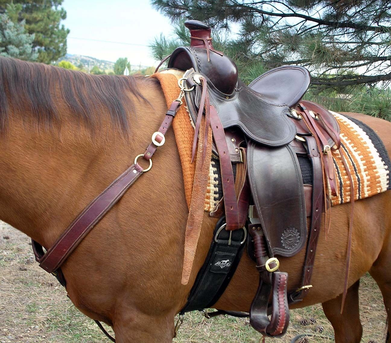 Used Rusty May Western Saddle 14  Dark Oil Very Sturdy Pre-Turned Stirrups