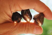 12 Xl Charged Jewelry Grade Polished Apache Tears Crystals Zenergy Gems™ 790cts