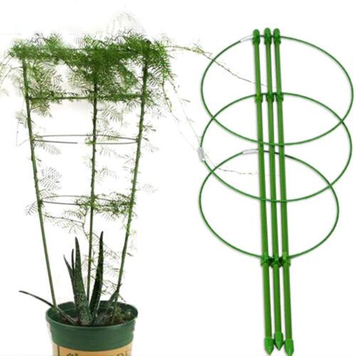 Durable Vine Climbing Rack Gardening Tools Plant Trellis Plant Support Frame  bw