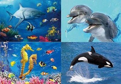 Seepferdchen Ansichtskarte sea horse