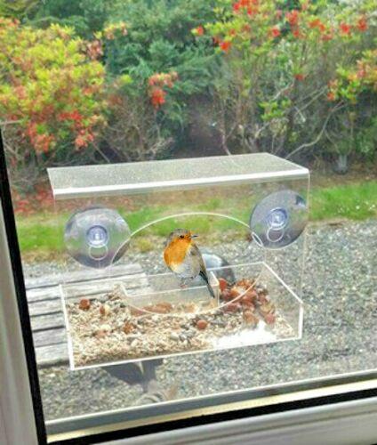 CHIARA visualizzazione Mangiatoia finestra Perspex nido di rondine tabella Semi di Arachidi da Appendere UK