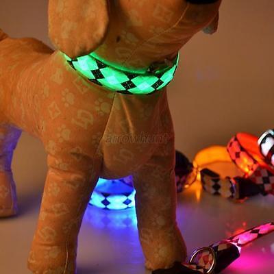Vogue LED Dog Collar Glow in the Dark Nylon Pets Night Safety Collar Flash Light