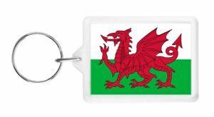 SCOTLAND PATRIOTIC PLASTIC KEYRING // KEYFOB GREAT GIFT LARGE SCOTTISH FLAG