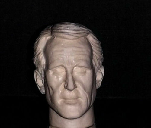1//6 SCALE CUSTOM ROY SCHEIDER MARTIN BRODY FROM JAWS ACTION FIGURE HEAD!