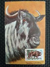 ROMANIA MK BISON WISENT MAXIMUMKARTE CARTE MAXIMUM CARD MC CM c1006